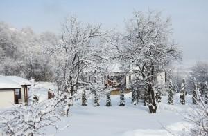 Winter2016 17-10