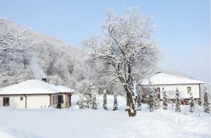 Winter2016 17-11